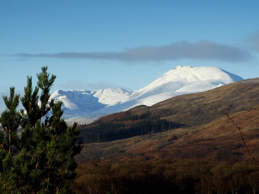 Ben Lomond in Winter by Susan Dailey