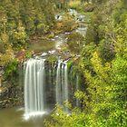 Dangar Falls From The Top by Michael Matthews