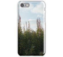 Rose Bay Willow Herb - Autumn iPhone Case/Skin