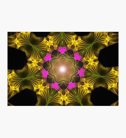 Fractal Web Photographic Print