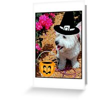 Trick or Treat!!! © Greeting Card