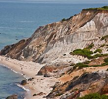 Clay Cliffs Of Aquinnah by phil decocco