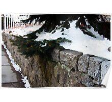 Wildwood Wall Poster
