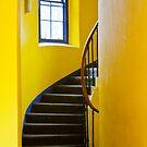 Yellow by Trevor Fellows