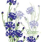 blue meadow cornflower design by Veera Pfaffli