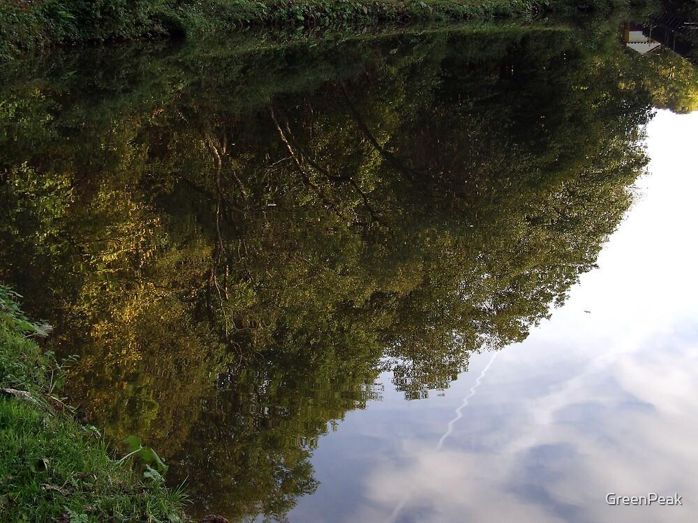 Still Water by Paul  Green