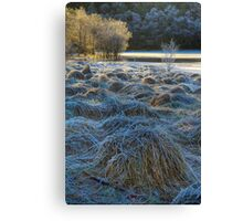 Chon Frost (1) Canvas Print