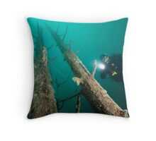 Twin Tower Throw Pillow