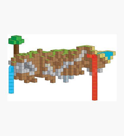 Minecraft Illustration Photographic Print
