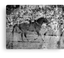 Olden Rodeo - Molalla Buckeroo  Canvas Print
