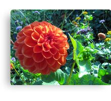 Flowering Ball Canvas Print