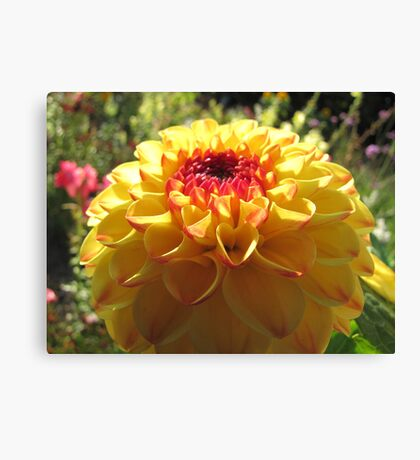 Yellow-Red Ball Canvas Print