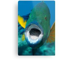 Oh sole mio! Metal Print