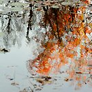 Natural Paint Daubs by Aimelle