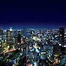 Osaka by Night - Japan by Nasko .