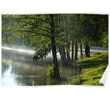 Trees in water at misty morning Poster