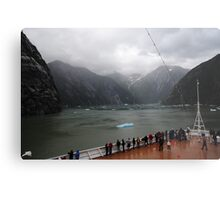 Tracy Arm Metal Print