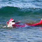 Santa Hits The Mediterranean - Crete Greece by mikequigley