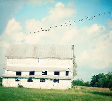 mead barn by beverlylefevre