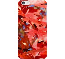 Maple in the Fall       ^ iPhone Case/Skin
