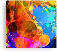 Colour your day Canvas Print