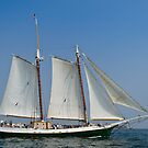 Schooner Liberty Clipper off Eastern Point by Steve Borichevsky