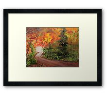 Canopy of Colors Framed Print