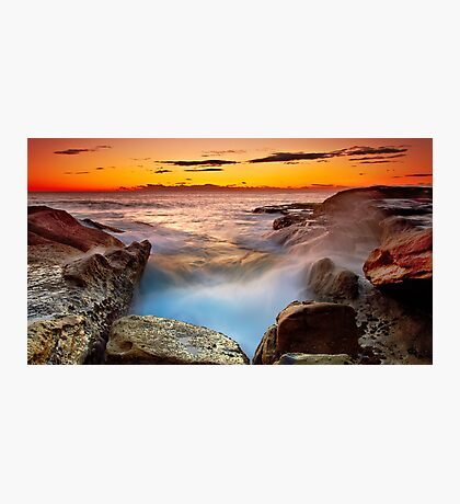 A Barnacle's Delight Photographic Print