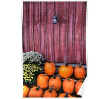 Autumn Pumpkins Poster