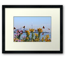 Migration Dance Of The Monarch! Framed Print