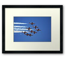Flight of the Snowbirds Framed Print