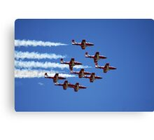 Flight of the Snowbirds Canvas Print