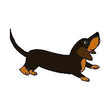 Playful Crouching Dachshund Puppy Dog Original Art Photographic Print