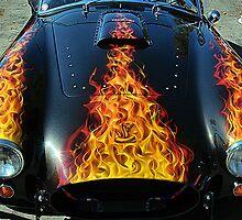Flamin' Hot Cobra by Bob Wall