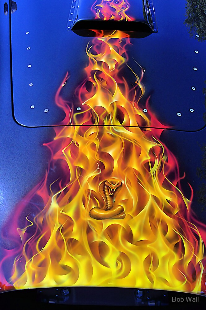 Flamin' Hot Cobra 2 by Bob Wall