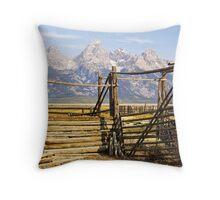 Teton Coral Throw Pillow