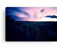 Fading light over pasture near Rangiora Canvas Print