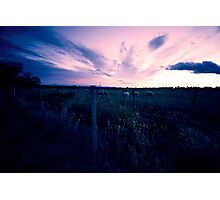 Fading light over pasture near Rangiora Photographic Print
