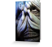 Is it a monster? Greeting Card