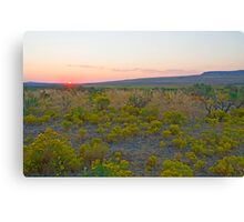 There Is Beauty In All Things Canvas Print