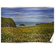 Anglesey coastline Poster