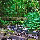 Forest Bridge by haybales