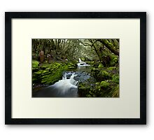 Mysterious Running Water on the Overland Track Framed Print