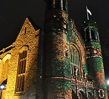 Northern Lights - Bonython Hall Castle by bsn-photography