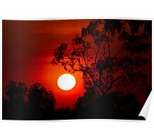 Sunset near Barkly Homestead N.T Poster