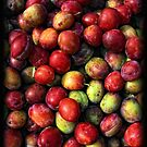 Plums by Simon Duckworth