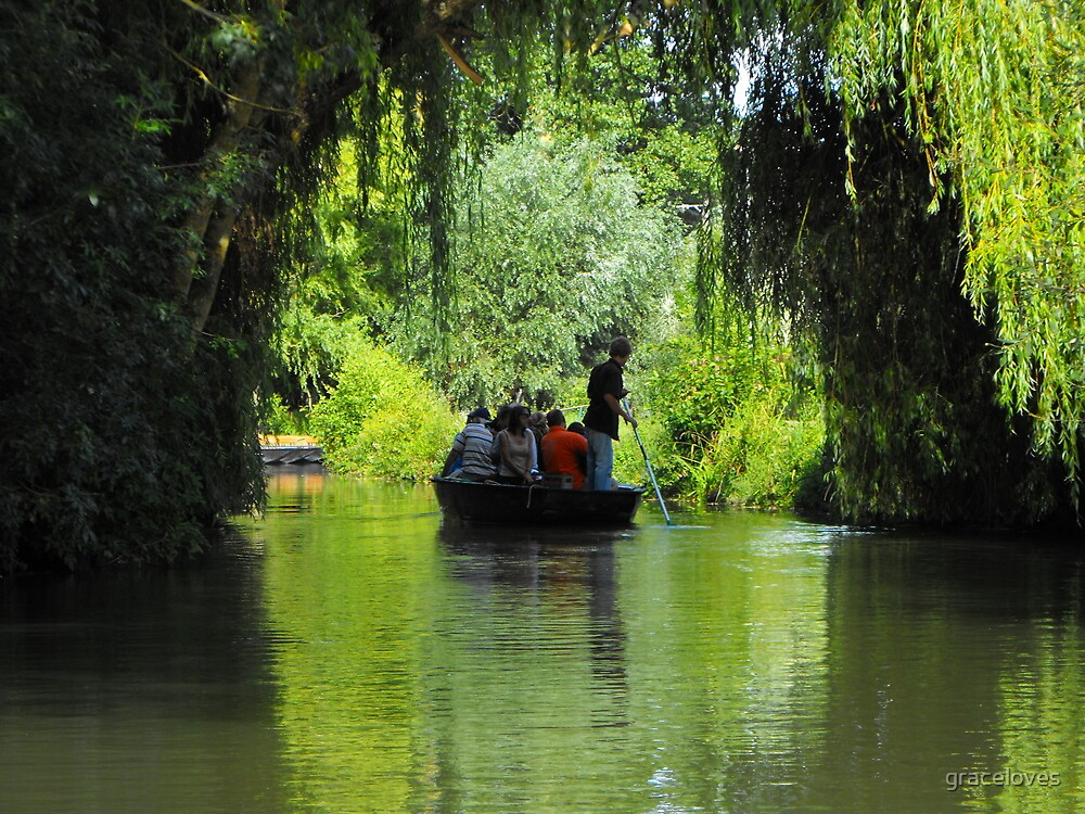 Green Venice at Coulon, France by graceloves