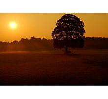 """MORNING RAYS"" Photographic Print"