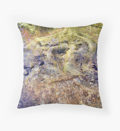 All That Glitters Is Not Gold Throw Pillow