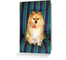 I am ready to entertain Greeting Card
